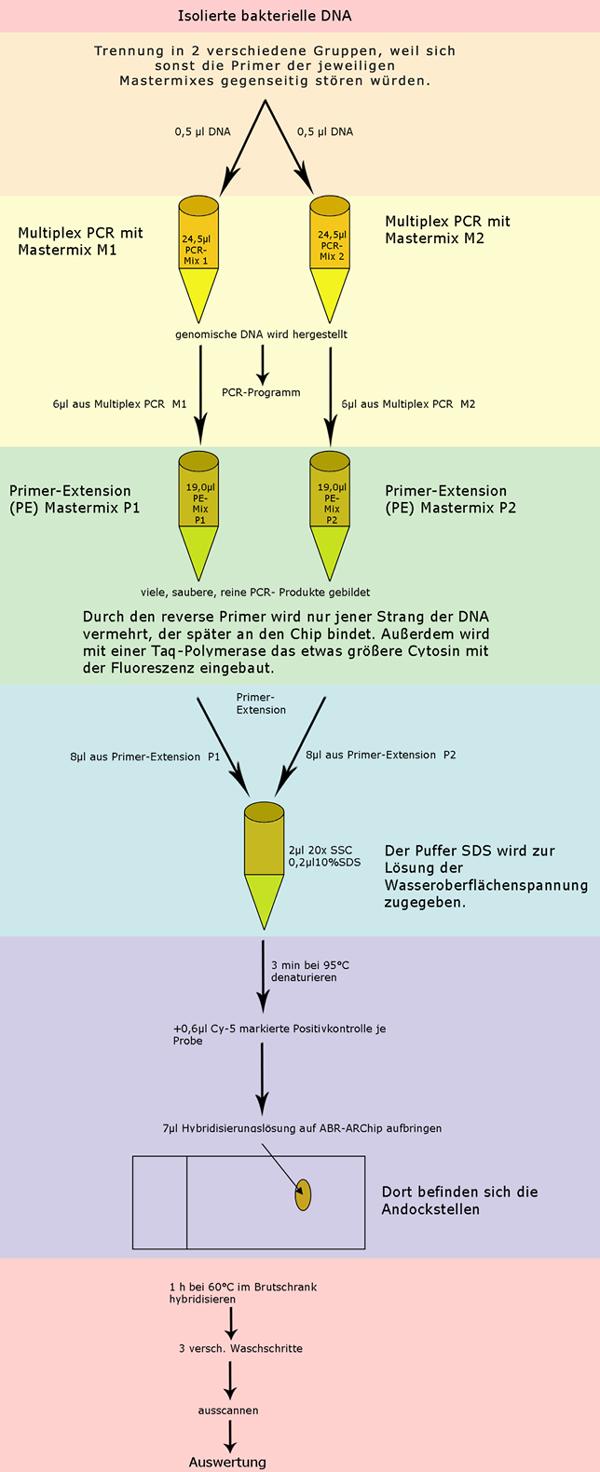 Großartig Http Flussdiagramm Bilder - Elektrische Schaltplan-Ideen ...